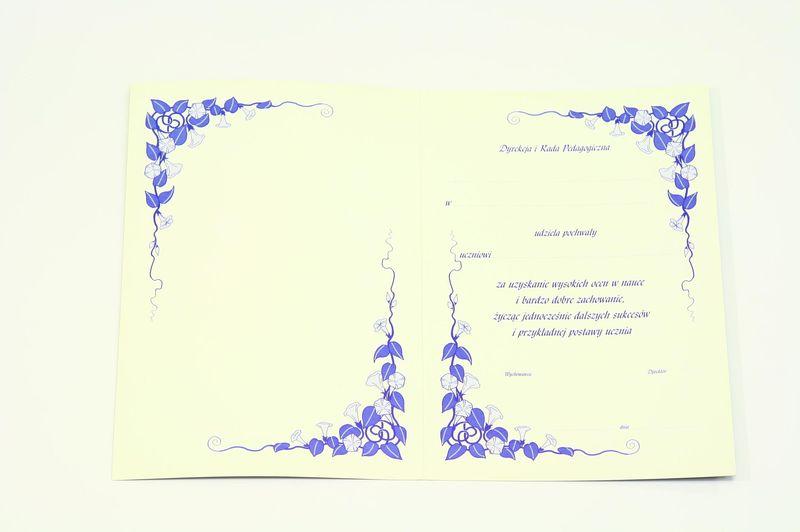 List Pochwalny Dla Ucznia Szkoły Wnętrze Jednokolorowe Wzór 1