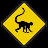 Śmieszne znaki drogowe ze zwierzętami (małpa 1 )