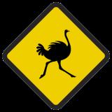 Śmieszne znaki drogowe ze zwierzętami (struś)