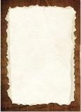 Arkusz ozdobny do druku dyplomów (bez treści) P-32