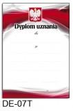 Dyplom uznania DE-07T (linie pomocnicze)