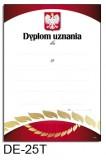 Dyplom uznania DE-25T z liniami pomocniczymi