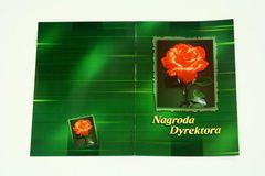 Nagroda dyrektora (bez treści) - wzór z różą