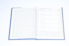 Dziennik lekcyjny dla klas I-III szkół podstawowych  - edukacja wczesnoszkolna