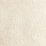 Karton ozdobny do druku dyplomów - kolor perłowo - srebrny - faktura mrożone szkło