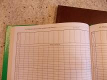 Dziennik zajęć szkoły stacjonarnej