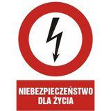 Znak - Niebezpieczeństwo dla życia - 21x29 cm