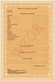 MEN-I/13b-w/2 - świadectwo dla uczniów gimnazjum dla dzieci i młodzieży z wyróżnieniem, zawierające znak graficzny PRK II