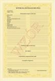 MEN I/23/2 Świadectwo szkolne promocyjne dla uczniów branżowej szkoły I stopnia